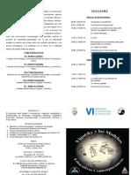 Díptico VI Seminario Int Psicología 2014