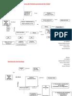Organización y Estructuras Del Sistema Provincial de Salud