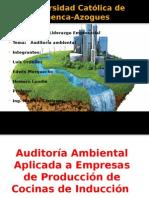 Auditoría Ambiental sus caracteristicas