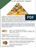 Piramide de nutricion vegana.pdf