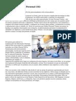 Article   Entrenador Personal (16)