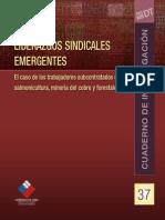 Dirección Del Trabajo (2010)-Liderazgos Sindicales Emergentes Forestal Minería y Salmón