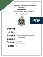 Informe Final Violencia Intrafamiliar