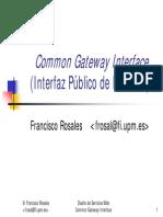 cgi.pdf