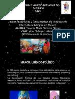tema#16 pdf
