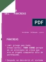 ANATOMÍA Pancreas