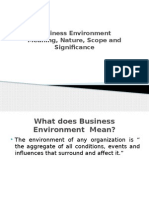 Business Environment Meaning Nature K