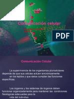Comunicacion celular Bcm5