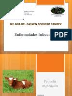 Complejo Diarreico Neonatal