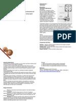 Speed Measuring Instruments