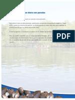 2007_10_02.pdf
