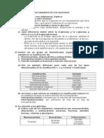 ACTIVIDADES DE LOS GLÚCIDOS.docx