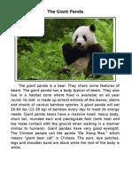 The Giant Panda is a Bear