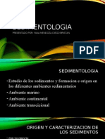 Tema 10 Sedimentologia