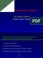 20100118 Estado Hipertensivo Del Embarazo