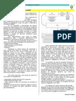 cap 9 - QUIMIOTERAPIA DO CANCER.pdf