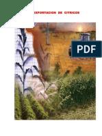 Agro Exportacion de Citricos