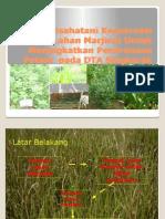 Bahan Presentasi Bks Ptn Plg