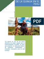 Cultivo de La Quinua en El Peru