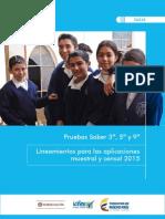 Guia 3 5 9 Lineamientos Para Las Aplicaciones Muestral y Censal 2015 2