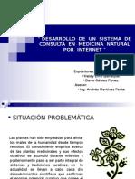 SISTEMA  DE CONSULTA.ppt