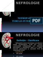 Nefropatiile Tubulo- Interstitiale