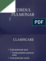cordul_pulmonar