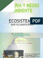 Ecosistemas MMA