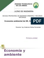 I. Economía y Ambiente Economia de RRNN