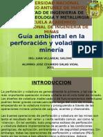 Exposicion Mineria y Medio Ambiente