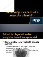 Fundeni Imagistica Pelvisului