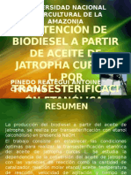 Obtención de Biodiesel a Partir de Aceite de Jatropha