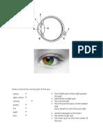 Eye Review