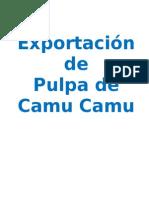 Plan de Negocio Camu Camu (1)
