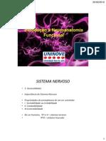 Neurônios e Células da Glia
