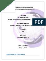 Oftalmología Cornea y Esclera