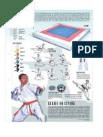 80869692-Karate.pdf
