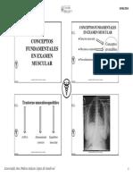 Conceptos Fundamentales en Examen Muscular Examen Muscular y Amplitud Articular Pp