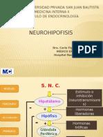 neurohipofisis