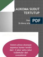 Glaukoma Sudut Tertutup PPT afri.pptx
