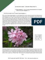 Eduart Zimer - (SDU) - Adventive Plants - Part 7 (2009)