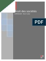Syllabus Société.pdf