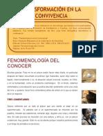 Fenomenologia Del Conocer