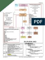 Ccc Gastrointestinal & Dig
