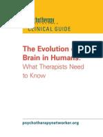 Evolution Brain Free Report