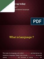 linguisticssomebasicconcept-131212022031-phpapp02