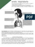 El aparato respiratorio tiene como función tomar oxígeno del aire y llevarlo a la sangre.docx