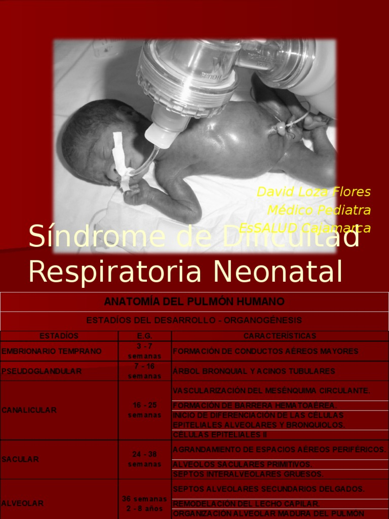 Clase SDR Neonatal (1)