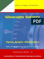 Glaucoma Surgery - Open Angle Glaucoma