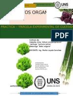 Info Cultivos Organicos